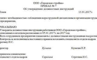 Образец приказа об утверждении должностных инструкций