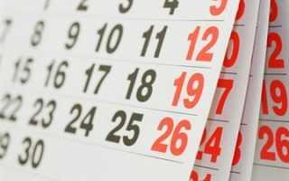 Как оформить отпуск работнику до 6 месяцев работы в организации?