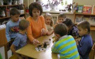 Какое количество дней отпуска положено младшему воспитателю?